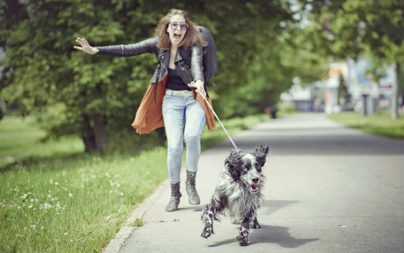 Woman being pulled by a dog on leash